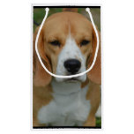 Adorable Beagle Small Gift Bag