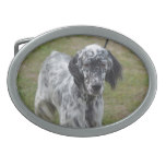 Adorable Black and White English Setter Belt Buckle