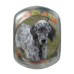 Adorable Black and White English Setter Dog Glass Jar