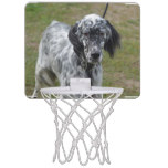 Adorable Black and White English Setter Mini Basketball Hoop