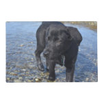 Adorable Black Lab Puppy Dog Placemat