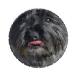 Adorable Cairn Terrier Jelly Belly Candy Tin