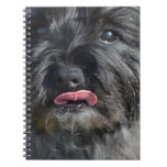 Adorable Cairn Terrier Notebook