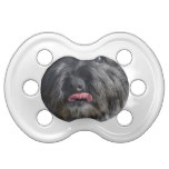 Adorable Cairn Terrier Pacifier