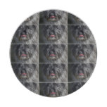 Adorable Cairn Terrier Paper Plate