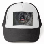 Adorable Cairn Terrier Trucker Hat