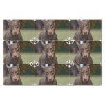 Adorable Doberman Pinscher Tissue Paper