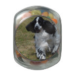 Adorable English Cocker Spaniel Glass Candy Jar