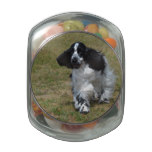 Adorable English Cocker Spaniel Jelly Belly Candy Jar