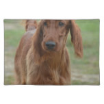 Adorable Irish Setter Cloth Placemat