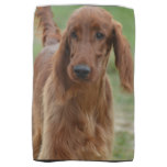 Adorable Irish Setter Kitchen Towel
