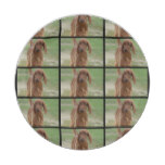 Adorable Irish Setter Paper Plate
