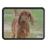 Adorable Irish Setter Tow Hitch Cover