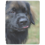 Adorable Leonberger iPad Smart Cover