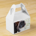Adorable Sheltie Favor Box