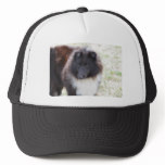Adorable Sheltie Trucker Hat