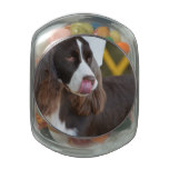 Adorable Springer Spanial Jelly Belly Candy Jar