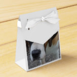 Adorable St Bernard Favor Box