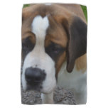 Adorable St Bernard Kitchen Towel