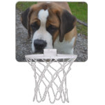 Adorable St Bernard Mini Basketball Hoop