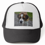 Adorable St Bernard Trucker Hat