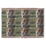 Amazing Corgi Throw Blanket