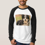 Australian Shepherd Long Sleeve Raglan Shirt