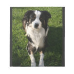 Australian Shepherd Photo Notepad
