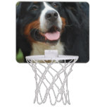 Baby Bernese Mountain Dog Mini Basketball Hoop