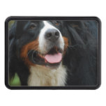 Baby Bernese Mountain Dog Tow Hitch Cover