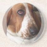 Basset Hound Dog Coasters