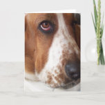 Basset Hound Puppy Greeting Card