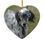 Beautiful English Setter Dog Ceramic Ornament