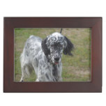 Beautiful English Setter Dog Keepsake Box