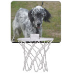 Beautiful English Setter Dog Mini Basketball Hoop