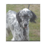 Beautiful English Setter Dog Notepad