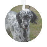 Beautiful English Setter Dog Ornament