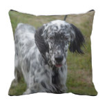 Beautiful English Setter Dog Throw Pillow