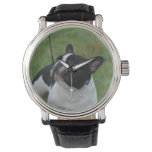 Black and White French Bulldog Wristwatch