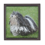 Black and White Puli Dog Keepsake Box