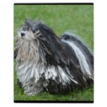 Black and White Puli Dog Plaque