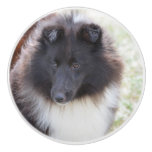 Black and White Sheltie Ceramic Knob