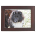 Black and White Sheltie Keepsake Box