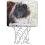 Black and White Sheltie Mini Basketball Hoop
