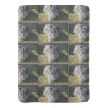 Black Cairn Terrier Baby Blanket