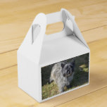 Black Cairn Terrier Favor Box