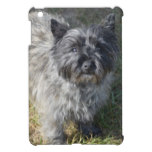 Black Cairn Terrier iPad Mini Cover