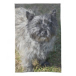 Black Cairn Terrier Kitchen Towel