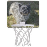 Black Cairn Terrier Mini Basketball Backboard