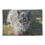 Black Cairn Terrier Travel Accessory Bag